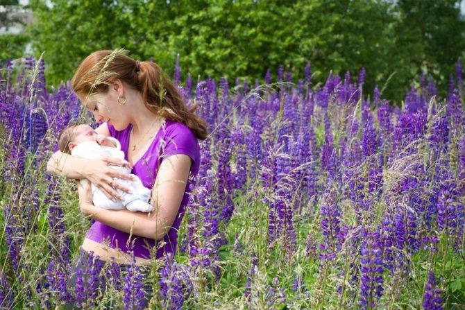 Фото. Автор: Bizi88 / Shutterstock.com.