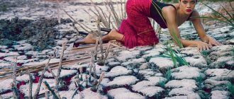 Фото Рианны в Vogue за ноябрь 2012