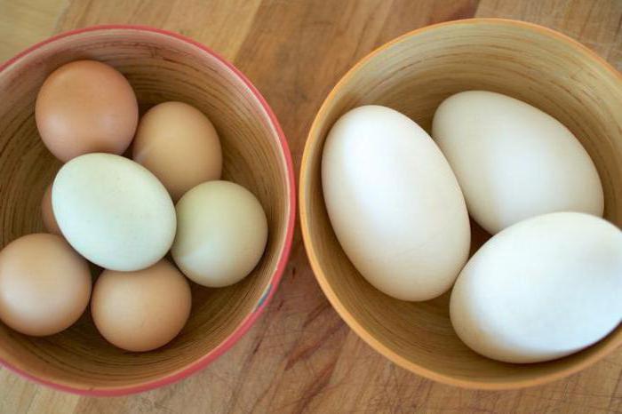 гусиное вареное яйцо польза и вред