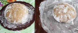 Хлеб из ржаной муки перед выпеканием