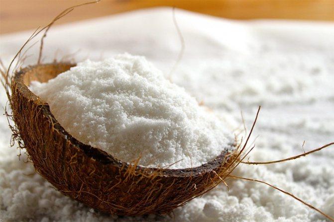 Как высушить мякоть кокоса   Волшебная Eда.ру