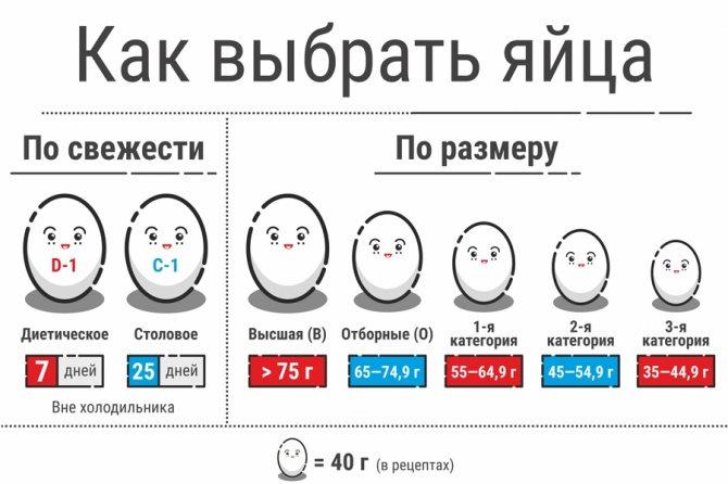 классификация куриных яиц