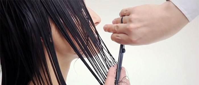 Когда лучше стричь волосы в июле 2018