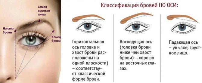 Красивый макияж. Показываем, как определить правильную форму бровей