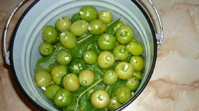 Лучшие методы засолки зеленых помидоров в ведре холодным способом