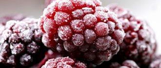 Лучшие способы, как заморозить малину на зиму правильно