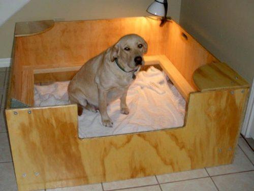 Место собаке для родов
