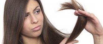 Почему секутся волосы? Лечение секущихся волос по всей длине и кончиков салонными процедурами и народными средствами