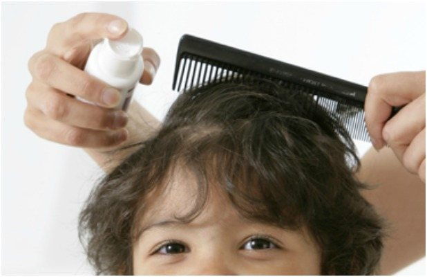Правильное лечение педикулеза позволит быстро избавиться от вшей и гнид