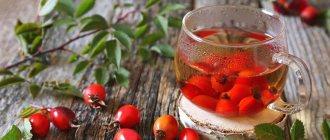 Рацион.ТОП - 7 горячих напитков для защиты от простуды, чай из шиповника