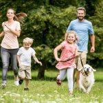 собаку и семья