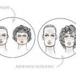 типы (формы) лица