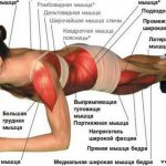 Упражнение планка, как правильно делать