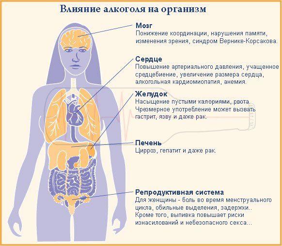 Влияние на организм