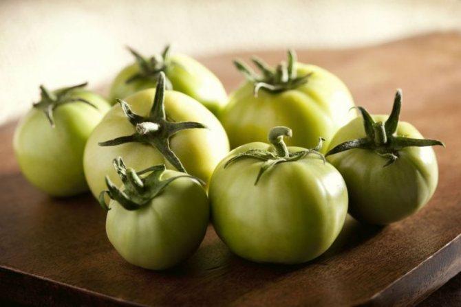 Выбор зелёных помидоров для соления