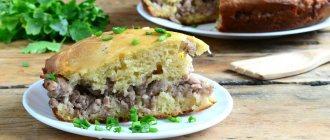 Заливной пирог с фаршем – рецепты теста на кефире, молоке, сметане, майонезе