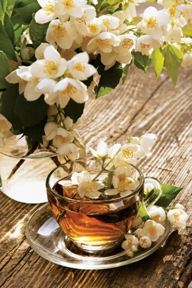 Зеленый чай с жасмином очень насыщен, поэтому, как правило, к нему ничего больше не добавляют